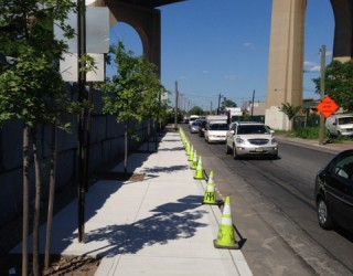 new sidewalk paved with trees